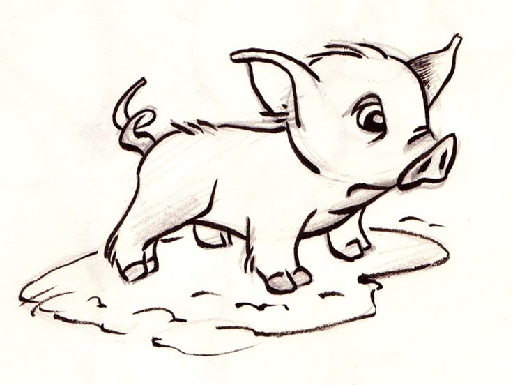 1000 images about animaux dessin on pinterest owl drawings little stitch and cute turtles - Dessin cochon ...