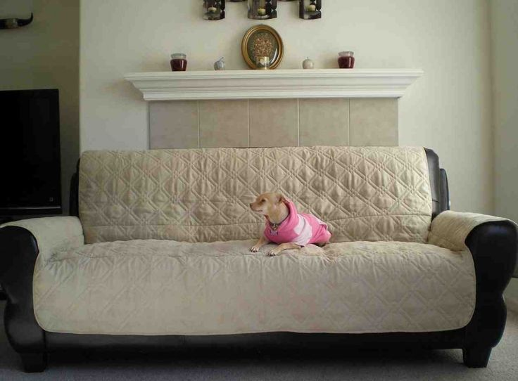 Best 25 Dog Couch Cover Ideas On Pinterest Pet Couch