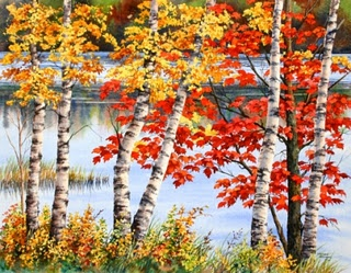 Autumn Birch Trees, painting by Varvara Harmon