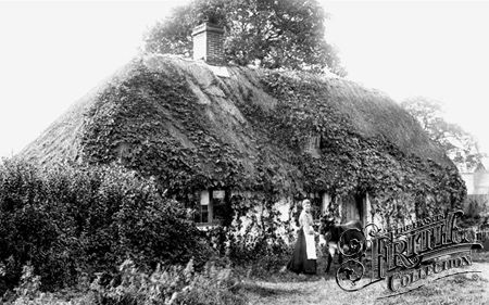 Old Cottage 1906, Frimley Green