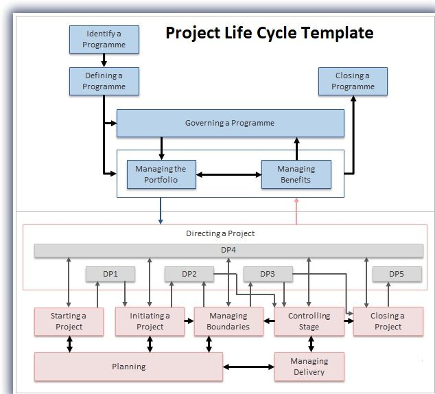 The  Best Life Cycle Management Ideas On   Management