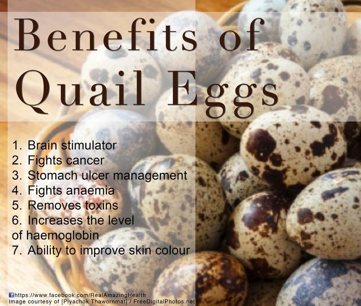 Big Benefits Of Quail Eggs Quail Eggs Benefits Egg Benefits