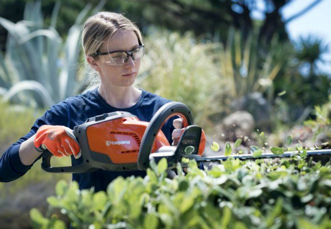 5 Common Yard Care Challenges Solved Yard Care Challenges Bob