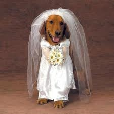 recien casada