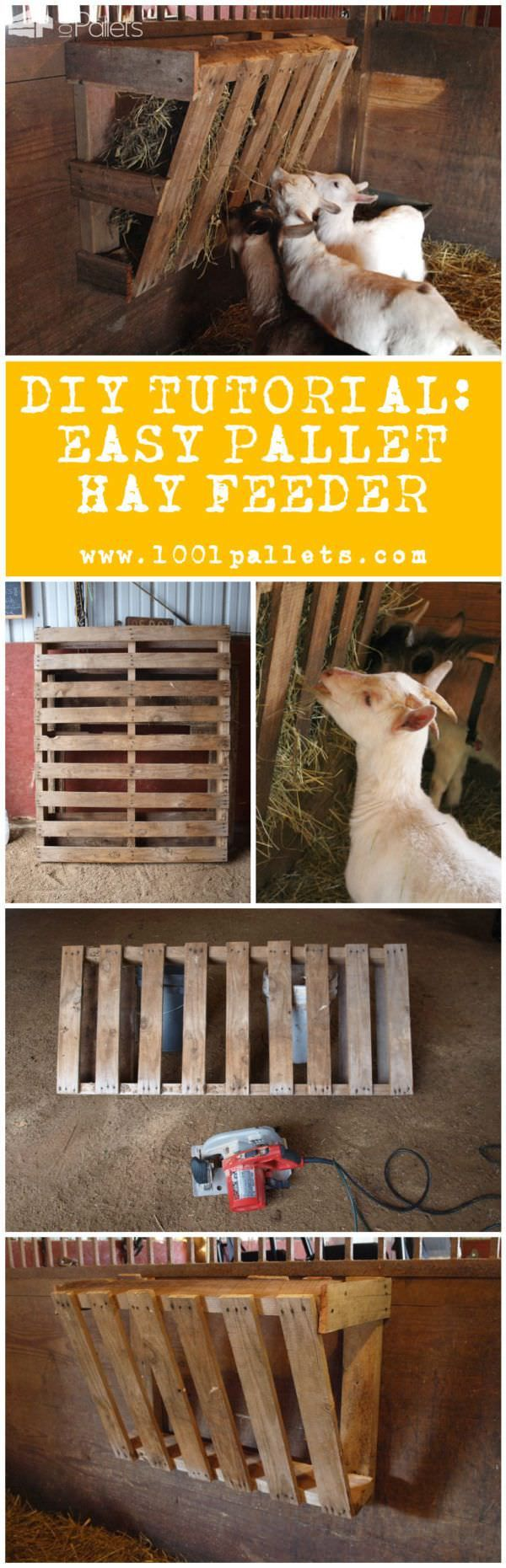 "Diy Tutorial: Easy Pallet Hay Feeder Elizabeth Ohiothoughts from the blog ""Ohiothoughts"" in collaboration with 1001Pallets will describe how to make an easy pallet hay feeder with one single repurposed wooden pallet and a price that will beat any commercial hay feeder. 1 Pallets. 2 Hours. We evaluated this project as an easy difficulty project. Available as a PDF File. To download this..."