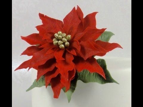 How to Make a Christmas Poinsettia Sugar Flower Gum Paste Cake Decorating Tutorial using Jem Cutters - YouTube