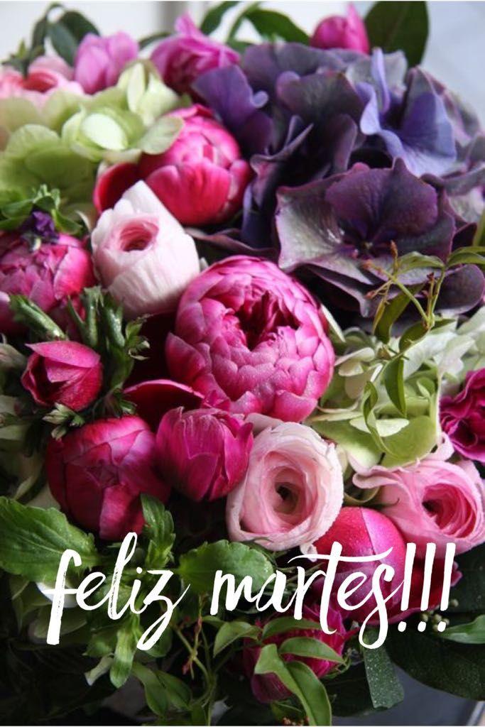 Feliz Martes Feliz Dia Martes Tuesday Happy Tuesday Happy Day Que Pases Un Lindo Dia Buenos Dias Good Mo Flores Feliz Martes Arreglos Florales