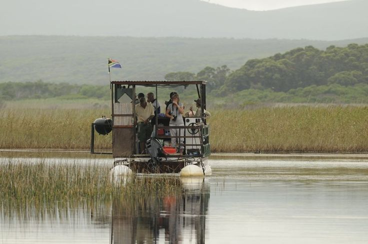 The River Rat is a a great way to see the bird life of the Klein River