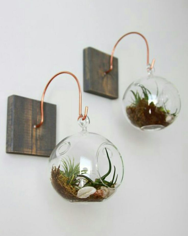 Wall Decor Wood And Copper Mount With Terrarium // Unique Wall Decor //  Handmade Homeu2026 How To Hang A Gallery Wall The Right Way Unique Ways Of  Displaying