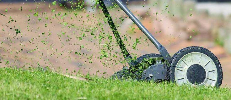 Préparer son jardin pour l'hiver, peut vite se révéler une corvée si l'on ne s'y prend pas à l'avance et régulièrement, voici nos conseils.