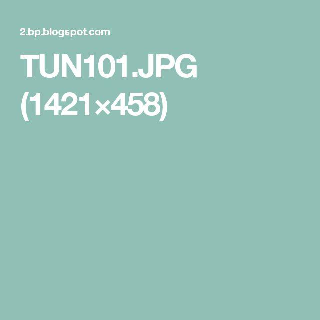 TUN101.JPG (1421×458)