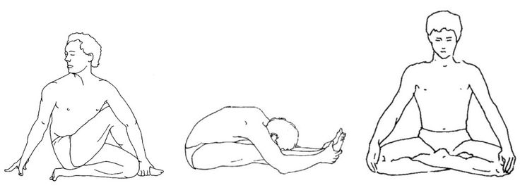 """Śarīrika Sādhana – Keeping the body fit and well. In the language of Patañjali Āsana is mostly Śarīrika Sādhana."" –TKV Desikachar France August 1983"