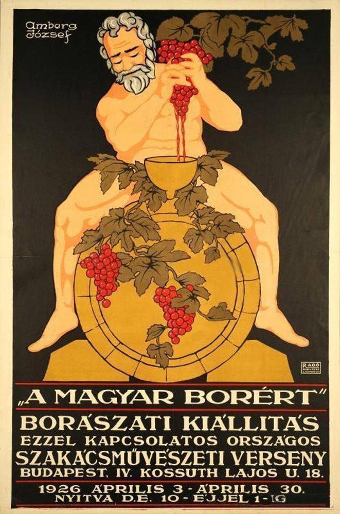 "Hungarian  poster    ""  EXHIBITION OF   VINE   +"