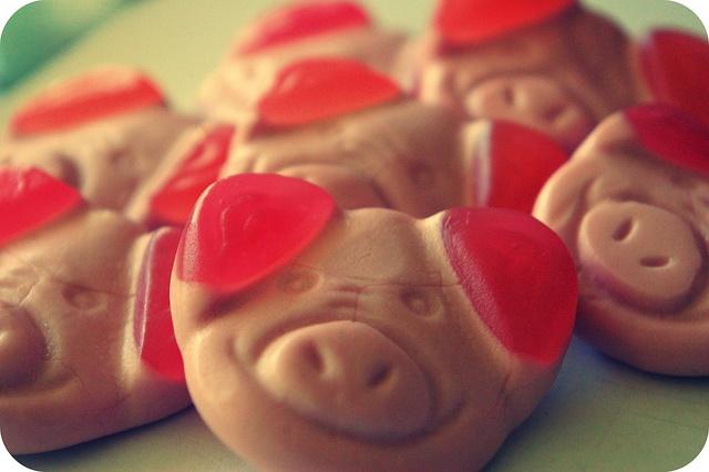 yummy, yummy, yummy! Percy Pigs!