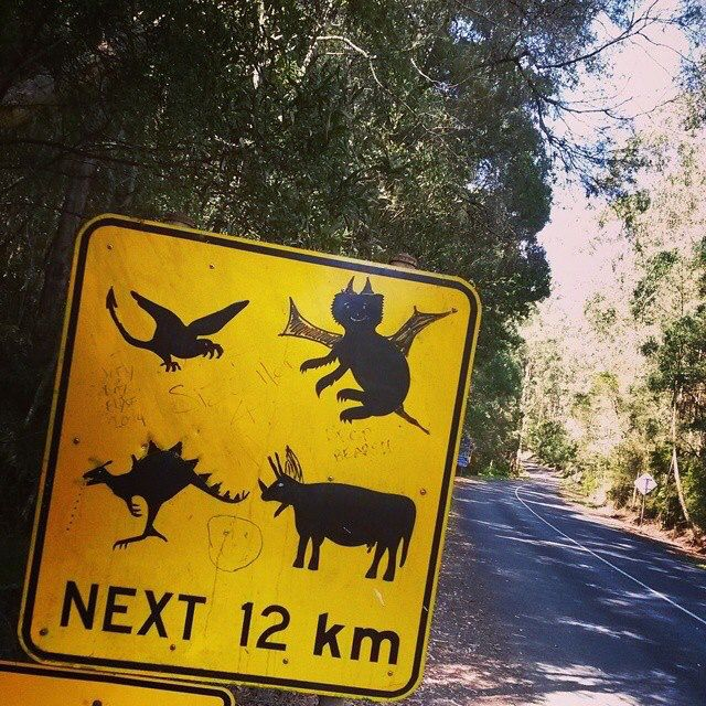 Watch out for... On the way to Lorne Melbourne