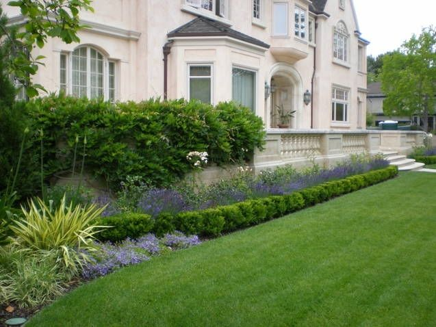 Perennials Behind Boxwood Hedge Clubhouse Pinterest