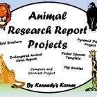 This 81 PAGE animal research packet includes everything you need for to do 6 completely different animal projects!  The pyramid display craftivity/...