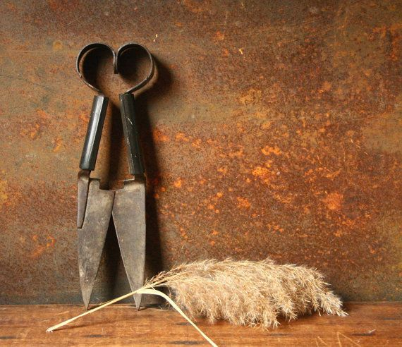 Vintage sheep shears by cristinasroom on Etsy.