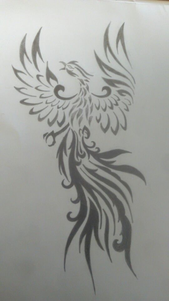 Tattoo done by high voltage tats I wanted to try good sketch of phoenix and here it is!