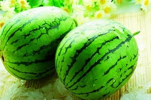 Melons can carry killer bugs