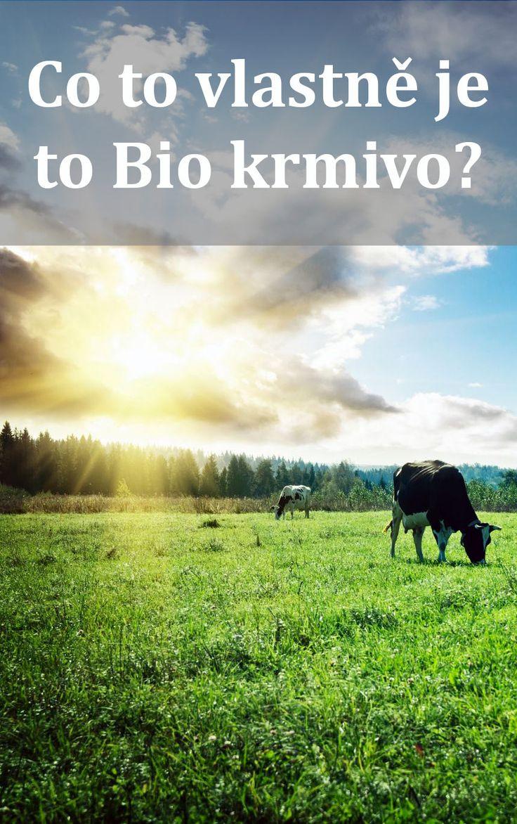 Dnes je bio všude ale u krmení pro psa? To už je moc. Ale co tedy to Bio znamená? Výrobky označené nálepkou Bio musí splňovat přísné podmínky a to zjednodušeně: Bez chemie, neindustrializované hospodářství, s ...