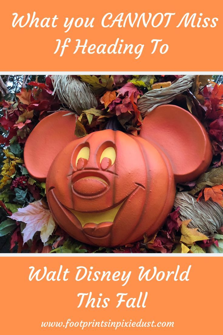 See What Activities And Events Are Happening Around Walt Disney World This Fall When Does The Epcot Int Walt Disney World Disney World Disney World Christmas