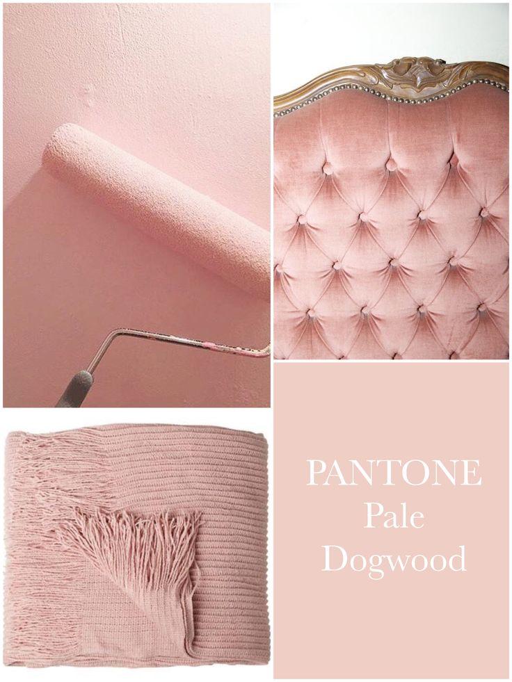 PANTONE Pale Dogwood   ~~ Home Style ~~   Pink paint ...
