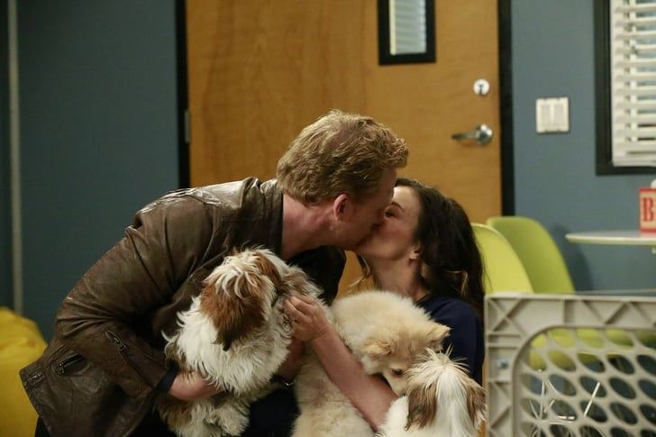 Pin for Later: 33 of TV's Sexiest, Sweetest, and Spine-Tingliest Kisses in 2016 Grey's Anatomy Owen (Kevin McKidd) and Amelia (Caterina Scorsone) and lil' puppies? All of this is great.