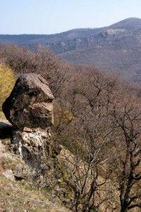Pilis-hegység természeti értékei, Ferenczy-szikla