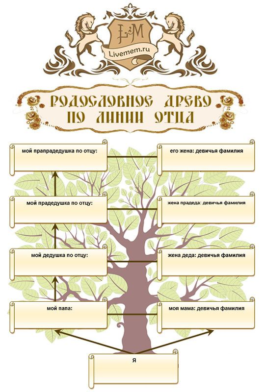 Генеалогическое древо Word формата - шаблон книжной ориентации