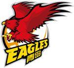 Qingdao Double Star Eagles, Qingdao,Shandong, China -Chinese Basketball Association- Division: Northern #DoubleStarEagles #Qingdao #CBA (L20541)