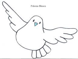22 best palomas images on Pinterest  Peace Drawings and Pigeon