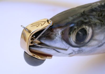 PredaPro Trolling Dead Bait Fishing Lures Sizes 1&2 - from Alibaba.com