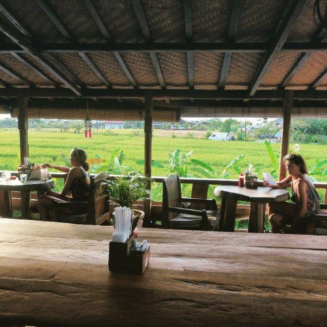 Pemandangan sawah hijau dari lantai 2 Betelnut Cafe
