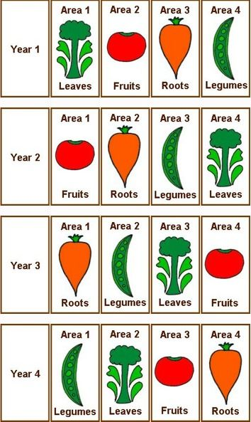 Crop rotation. For Central Florida I could do a two year rotation based on spring/summer and fall/winter.