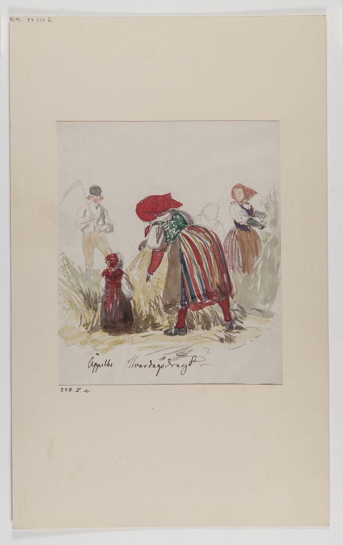 Akvarellerad handteckning av J W Wallander. Dräkt för kvinna och barn från Äppelbo, Dalarna. Skördearbete. I bakgrunden en man…