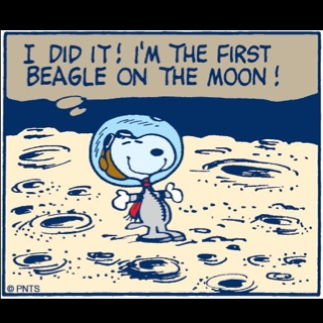 Met Life Quotes 2: 42 Best Images About SNOOPY- SO MANY CHOICES On Pinterest
