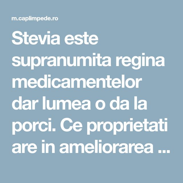 Stevia este supranumita regina medicamentelor dar lumea o da la porci. Ce proprietati are in ameliorarea diabetului si osteoporozei?