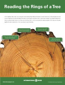 Great chart and information on studying the history of a tree through its rings.