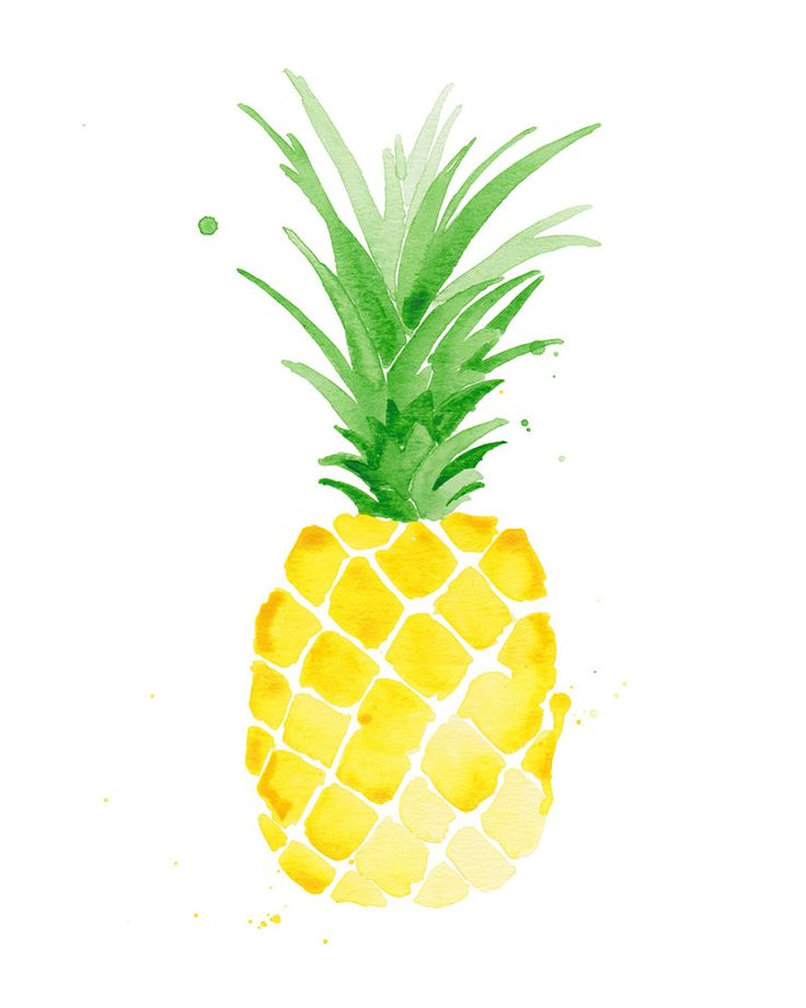 "8x10"" Tropical Pineapple Print.  Fine art print of an original watercolour by Jessica Rowe.  Size:  8″ X 10″  Origin: USA  Professionally printed by a shop that specializes in giclee printing with archival inks on archival matte fine art paper.  Ships unmounted and unframed in a clear eco-friendly compostable plastic flap-seal sleeve with backing board."