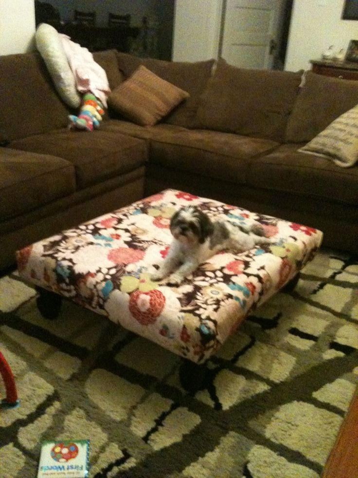 pallet, foam, legs from Lowes, cute material = awesome DIY ottoman for pets and/or people