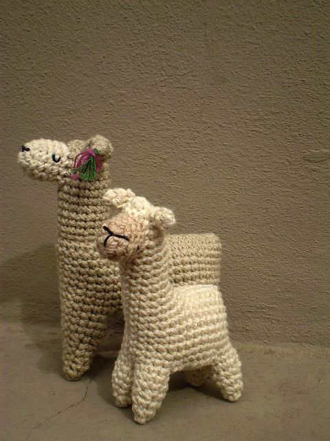 2 llamas by pica - pau, via Flickr ?Pattern, could use in Nativity
