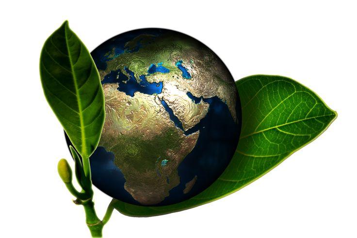 szkolenia ISO 14001 - do czego Ci potrzebne?