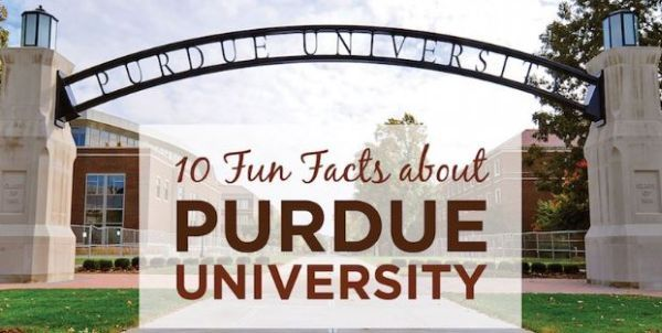 22 best Penn state images on Pinterest Ideas para fiestas, Rainbow - Resume Sample For Pennsylvania University