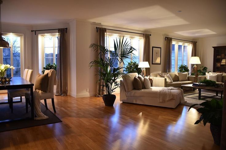 open concept with gorgeous wood flooring and plant…
