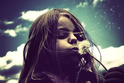 image enfant qui souffle   wish I could show you,