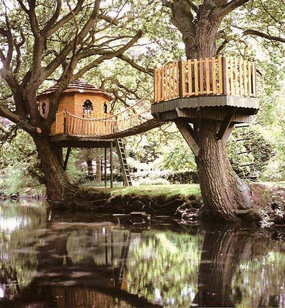 would love to have a treehouse in the backyard for my future kids great idea to have a main treehouse and having a fenced verandah type thingy around a