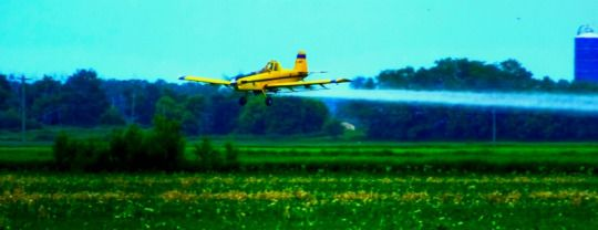 Crop Dusting in the RM of Hanover, Manitoba