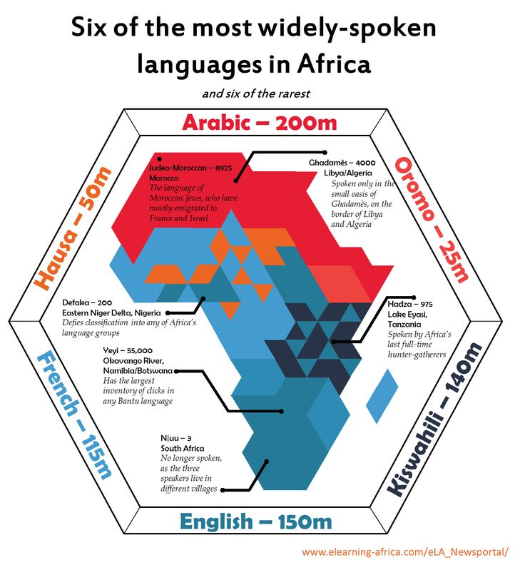 This infographic teaches about the different languages that are in Africa alone.