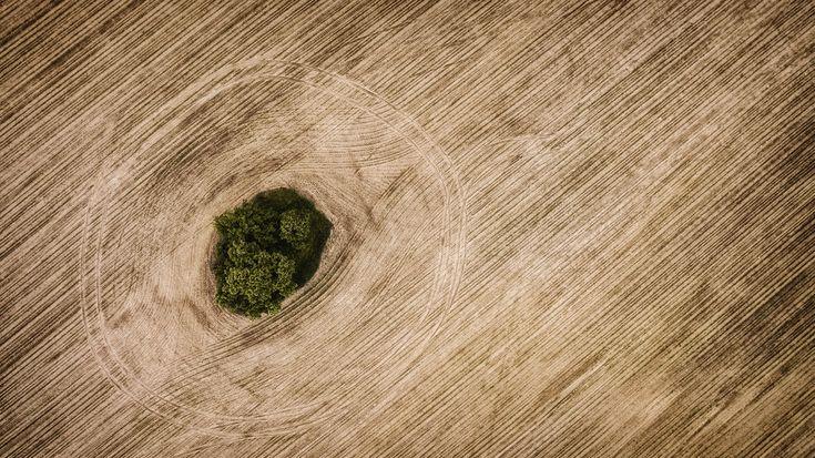 Green Isle | FotoAparát.cz